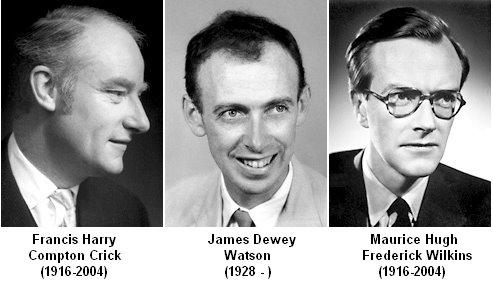 Nobel_Laureates_1962_Crick_Watson_Wilkins